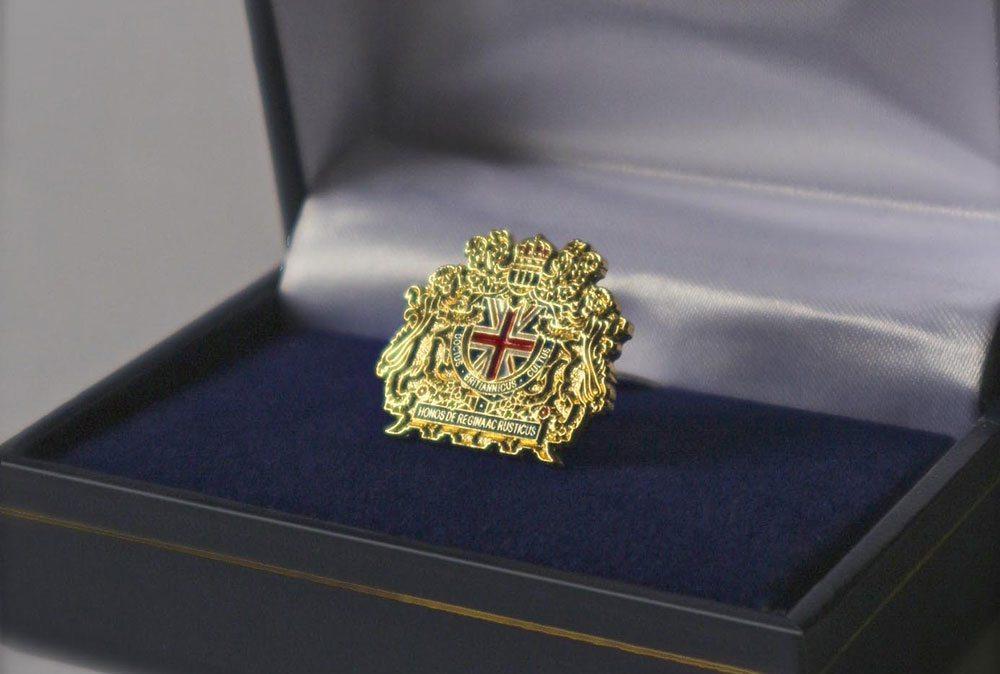 TBBI lapel pin badge